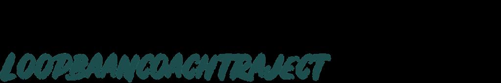 loopbaancoachtraject Den Haag | Leidschendam