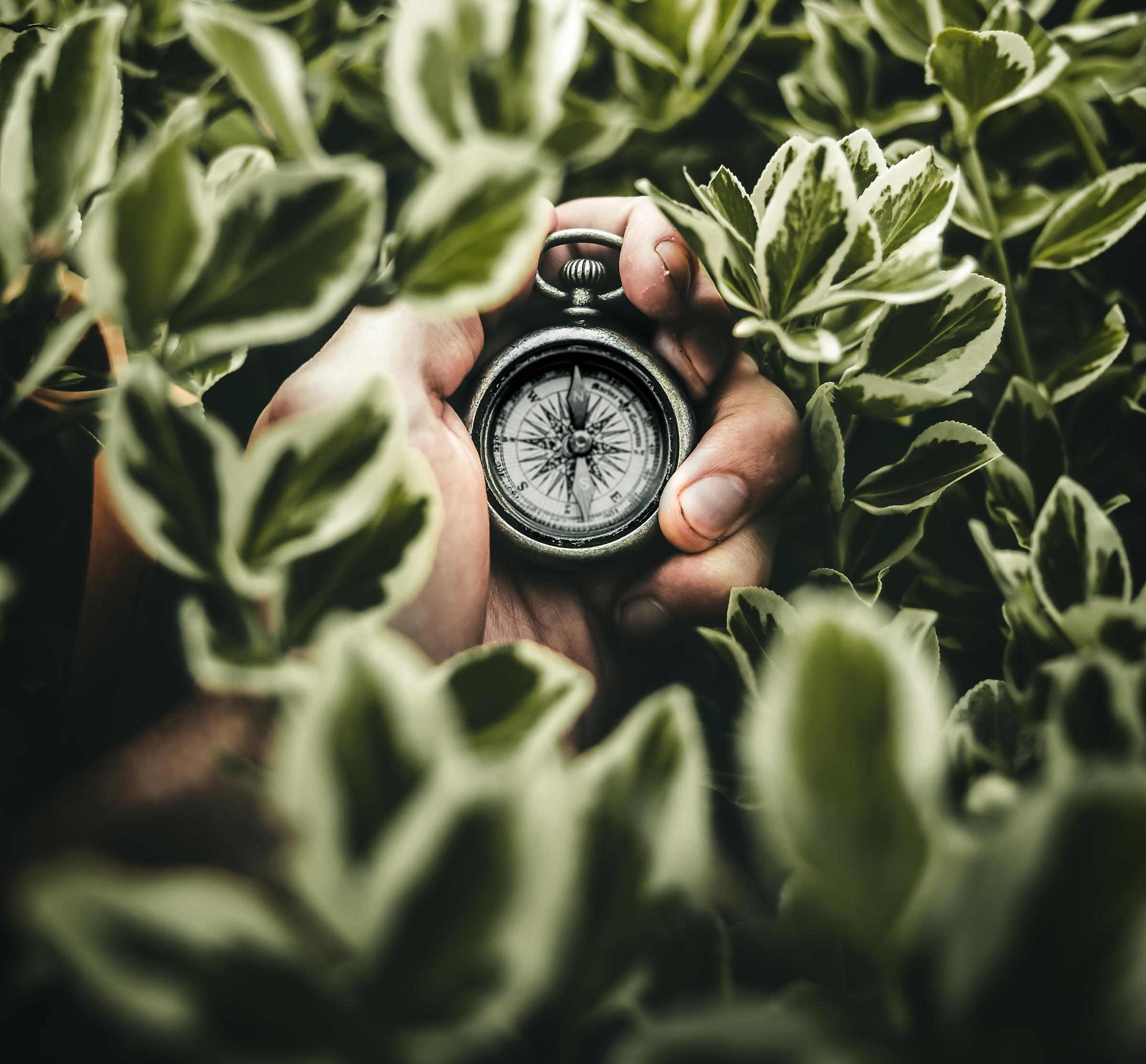 Heb jij een loopbaanplan? Start nu met het plannen van je loopbaan en zorg dat je dat werk kan doen waar je plezier van krijgt.